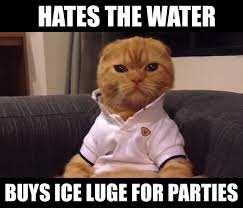Rich Cat Meme - the 10 best preppy cat memes cats vs cancer