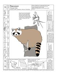 missouri species coloring sheets