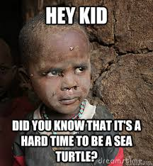 African Baby Meme - hey kid did you know that it s a hard time to be a sea turtle
