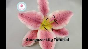 Star Gazer Lily How To Make A Sugar Stargazer Lily Using Flower Paste Or Gum Paste