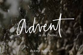 a psalm of thanksgiving 138 deeply rooted magazine