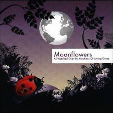Moon Flowers Moonflowers U2014 Free Listening Videos Concerts Stats And Photos