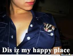 Happy Place Meme - my happy place by xiro meme center