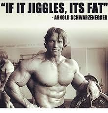 Arnold Schwarzenegger Memes - if itjiggles its fat arnold schwarzenegger arnold schwarzenegger
