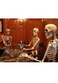 Halloween Skeleton Dog Decoration by Realistic Posable Skeleton