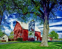 Farm farmhouse landscapes outbuilding nature rural barn
