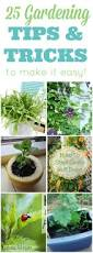 Gardening Picture 25 Amazing Gardening Tips And Tricks Mom 4 Real
