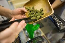 wednesday green friday marijuana sales spike at