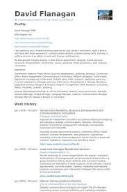 p l responsibility resume resume examples oracle developer sample
