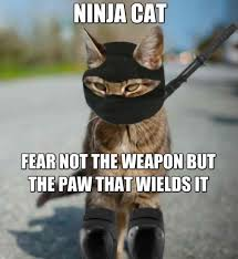 Fear Meme - 100 best ninja memes that makes you laugh golfian com