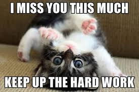 Miss You Memes - 20 super cute memes that say i miss you love brainy quote