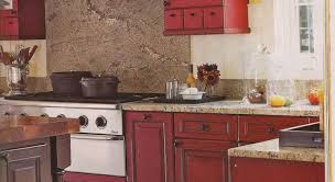 marvelous design of kitchens of india best bugs in the kitchen