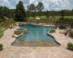 large free form pool with a zero entry artistic pools inc
