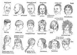 esl hairstyles hairstyle vocabulary vocabulary pinterest english english
