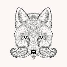 sketch fox with a beard and moustache vector art thinkstock