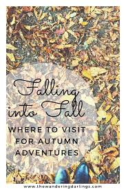 falling into fall where to visit for autumn adventures