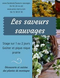 cuisine plantes sauvages stage cuisine plantes sauvages briançonnais et hautes alpes merry