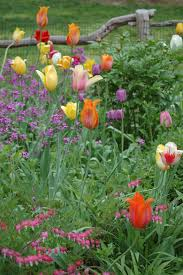 at long hill in beverly discover one of the most beautiful gardens