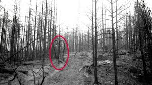 Slenderman Memes - know your meme slender man youtube