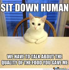 White Cat Meme - how my cat shows she s hungry by droos meme center