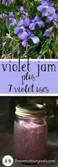 best 20 violets ideas on pinterest purple tea mugs pansies and