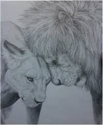 lion and lioness by maiacarlson on deviantart