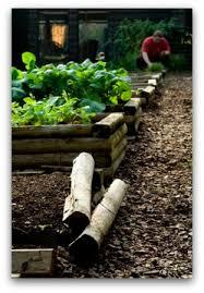 Raised Gardens For Beginners - beginner vegetable garden free plans pictures and worksheets