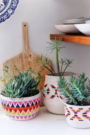 4859 best plants images on pinterest plants houseplants and