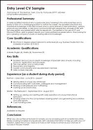 Resume Summary Statement Examples Entry Level by Bookkeeping Resume Summary Resume Example Tutor Entry Level Staff