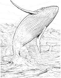 swiss family robinson coloring pages kids and creativemove me