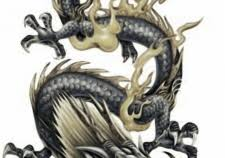 dragon tattoo ideas best dragon tattoos