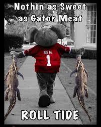 Roll Tide Meme - roll tide gators football pinterest roll tide alabama and