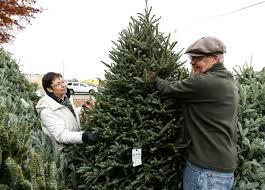 big brothers big sisters christmas tree fundraiser kicks off