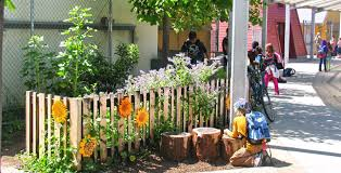 Ideas For School Gardens Elementary School Garden Ideas Photograph Asphalt To