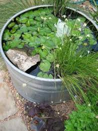 Galvanized Trough Planter by Cute Oblong Galvanized Tub Garden Designed Well With Rocks On The
