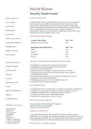 Summary For Resume Example by Resume Summary For College Student Best Resume Collection