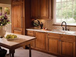 Kitchen Cabinet Wood Choices Color Choices For Kitchen Cabinets Gallery Also Cabinet Wood