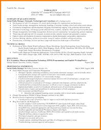 Resume Career Summary Example by Professional Summary Examples For Resumes Free Resume Example