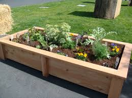 Garden Box Ideas Attractive Raised Garden Box Ideas Livetomanage
