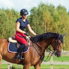 horse racing saddle horse racing saddle suppliers and