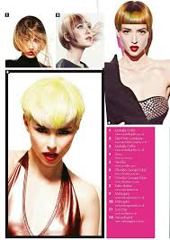 influance hair dye pin di influance hair care su inspiration hair color pinterest