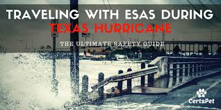 Texas Traveling images Traveling with esas pets during a texas hurricane must read jpg