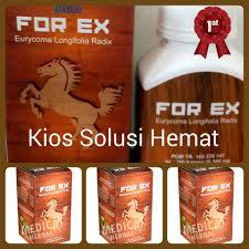 jual forex for ex 50 kapsul herbal suplemen stamina kuat pria