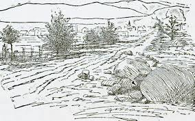 geologic column field sketches earth magazine