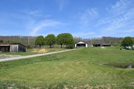 West Tennessee Auction Barn Bean Station Tennessee Real Estate East Tennessee Homes Cattle