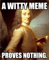 Witty Memes - a witty meme proves nothing good guy voltaire quickmeme