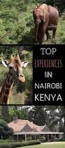 94 best africa images on pinterest africa travel travel tips