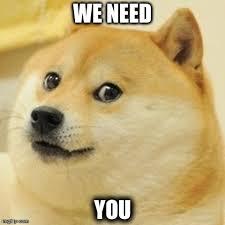I Need You Meme - doge meme imgflip