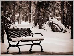 park bench u2026 scott u0027s place images and words