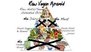 alimentazione ferro basso la verit罌 sulla dieta vegana biochronicles